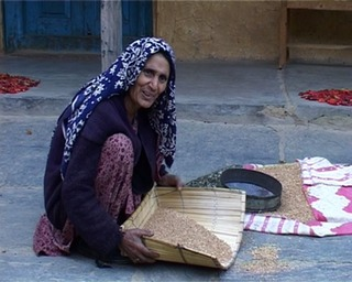 Gaddhi Woman winnowing in Ravi Valley